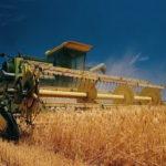 Україна входить до трійки найпотужніших світових експортерів зерна