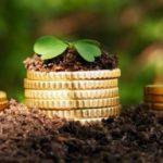 До 1 липня рівняни отримають повідомлення про сплату земельного податку