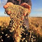 Аграріям Рівненщини допомагають виплачувати банківські позики