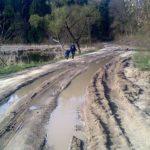 У селі, яке за 13 кілометрів від Рівного, дітей не пускають в школу, бо бояться, що потопляться в болоті