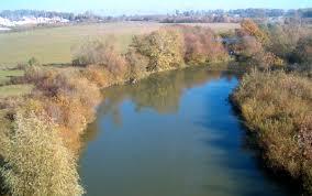 Який стан води у річках Устя та Горинь