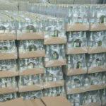 За виробництво фальсифікованого алкоголю будуть відповідати перед законом