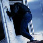 У двох районах Рівненщини поліцейські затримали крадіїв