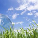 На Рівненщині стартує щорічна всеукраїнська акція «За чисте довкілля»