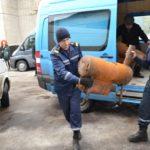 На Рівненщині зібрали допомогу жителям обстріляної Авдіївки