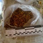 На Рівненщині у чоловіка вилучили два пакети з наркотиками