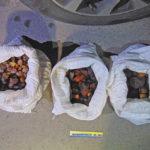 У місті Рівному водій автомобіля перевозив понад 10 кг бурштину