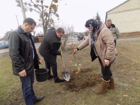 На Дубровиччині заклали парк на честь загиблого Героя
