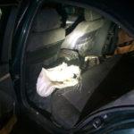 Рівненські поліцейські вилучили понад 15 кілограмів бурштину в жителя Волині