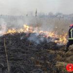 На Рвненщині за минулу добу рятувальники тричі виїжджали на ліквідацію загорань сухої трави, очерету та чагарників