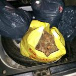 У жителя Барселони спецризначенці в Рівному вилучили понад сім  кілограмів бурштину
