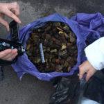 На Рівненщині поліцейські за добу вилучили понад 65 кілограмів бурштину  та мотопомпу
