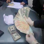 На Рівненщині провели спецоперацію по викоріненню корупційної складової в лісгоспах