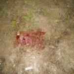 У Рівному бійка закінчилася для двох чоловіків тяжкими ножовими ранами