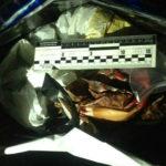 На Рівненщині поліцейські вилучили майже вісім кілограмів бурштину