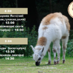 У Рівненському зоопарку знову цікавий перформанс за участі тварин