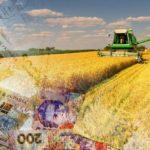 На Рівненщині фермерському підприємству його керівник завдав збитки на суму 2,5 млн грн