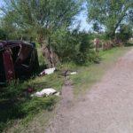 На Рівненщині чоловік вкрав автомобіль та потрапив у ДТП