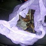Понад п'ять кілограм бурштину правоохоронці виявили під час огляду автомобіля