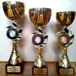 Кубок голови ОДА виграв 10-річний спідвеїст