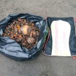 Майже п'ять кілограмів бурштину вилучили правоохоронці на Дубровиччині