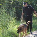 На Рівненщині чоловік зарізав жінку. Поліцейські розшукують вбивцю.