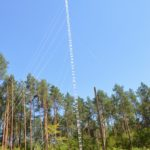 Лісівники Дубенського лісгоспу облаштували цілодобове відеоспостереження за лісовими масивами