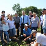 На Рівненщині розвивають картопляний бізнес