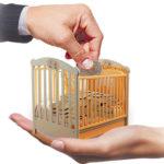 На Рівненщині 5 боржників сплатили штрафи за борги з аліментів