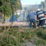 Через негоду на Рівненщині сталося знеструмлення 42 населених пунктів
