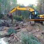 На Рівненщині в наслідок незаконного видобутку бурштину пошкоджено 5013 гектарів земель