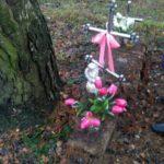 Поліцейські викрили зловмисників винних у нарузі над 20 могилами на Рівненщині