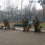 Поліцейська собака з Рівного забезпечуватиме безпеку в прифронтовому регіоні