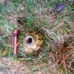 Дві гранати та понад 60 патронів вилучили поліцейські на Рівненщині