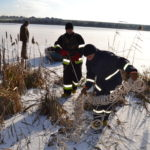Рятувальники врятували лебедя з крижаної пастки (ФОТО, ВІДЕО)
