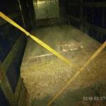 На Рівненщині виявили факт незаконного перевезення пиломатеріалів
