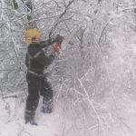 Рятувальники надавали допомогу мешканцям Рівненщини по обрізанню пошкоджених дерев внаслідок негоди