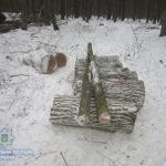 Поліцейські Рівненського району викрили крадіїв лісу