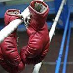 У Рівному діти поліцейських здобули нагороди у боксерських поєдинках