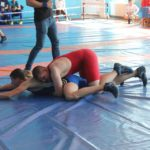 У Сарнах відбувся турнір з греко-римської та вільної боротьби