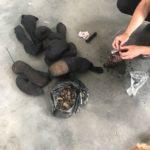 Жителька Рівненщини намагалась вивезти до Польщі 45 кілограмів «сонячного каміння» (ВІДЕО)