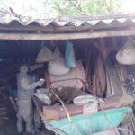 Гощанські рятувальники знищили кубло агресивних шершнів