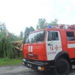 Рятувальники звільнили проїжджу частину дороги від поваленого дерева