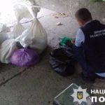 На Рівненщині поліція вилучила бурштину на 2,8 мільйони гривень