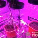 На Рівненщині поліцейські затримали наркозбувача та вилучили обладнання для вирощування марихуани