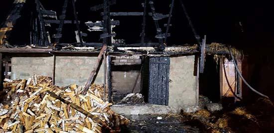 На Сарненщині у пожежі загинула корова