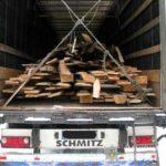 На Рівненщині поліцейські викрили вантажівку із незаконною лісопродукцією