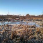 На Рівненщині бійці ДСНС врятували від неминучої загибелі лебедя
