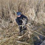 На Рівненщині  бійці ДСНС врятували молоду козулю, що ледве не провалилася під кригу