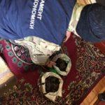 На Рівненщині у старателів вилучили бурштину та обладнання на понад 500 тисяч гривень